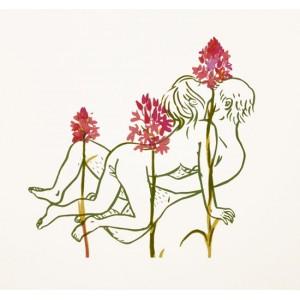 MARIANA CHIESA - FlorEros - Orchidea