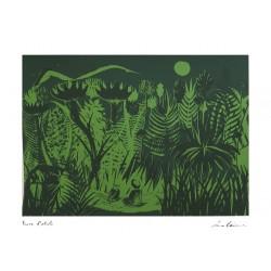LUCA CAIMMI - Incontro nel bosco