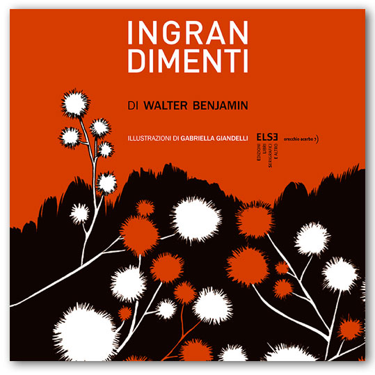 ingrandimenti cover